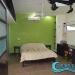 5.- Departamento 2 Palmas - Bedroom