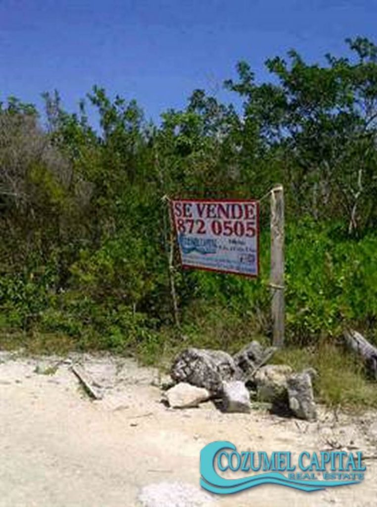 5.- Terreno Santiago - Golf Curse -Beachfront, Cozumel.