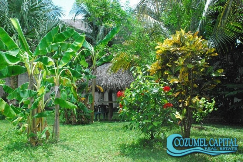 9.-Casa_Colonial Garden