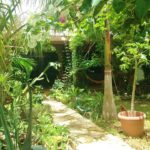 22.- Casa Bonanza - Garden & porch