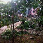 32.-Casa Bonanza - Garden view 5