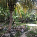 11 CASA ESQUINA - Garden Entrance