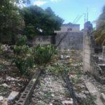 6.- Casa Cruz - Backyard.