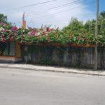 14.- Casa alegre - Front view