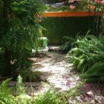 8.- Casa Alegre - Garden 1
