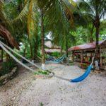 9. Centro Holistico - Hammocks, Coconuts, Stingless Bee Sanctuary