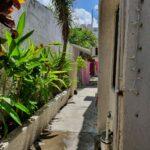 30.- CasaTom - Side Corridor green area