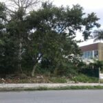 4.- Terreno Ceiba - front view